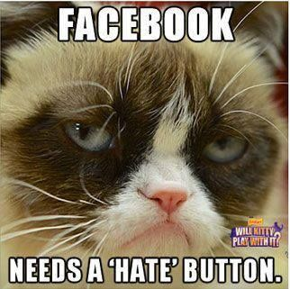 grumpy cat. hate button