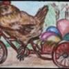 cocotte à bicyclette