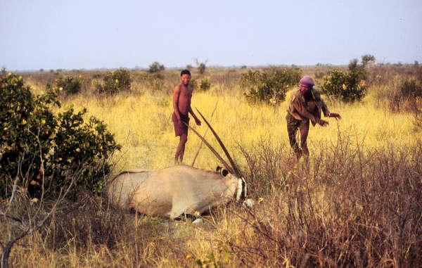 Les Nations-Unies condamnent le traitement infligé aux Bushmen du Botswana