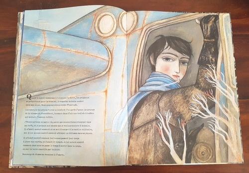 Le renard et l'aviateur