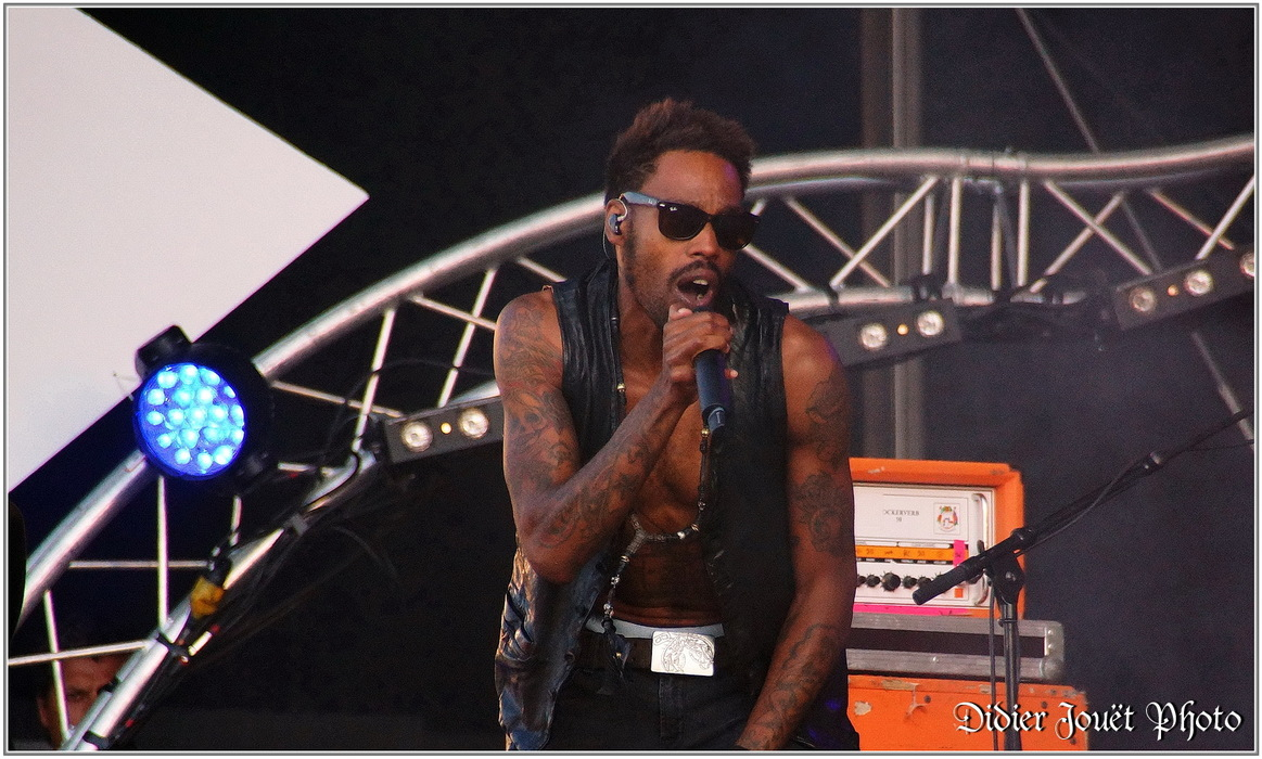 Skip the Use / Vieilles Charrues 2014