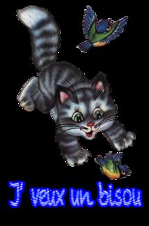 Mots de chats