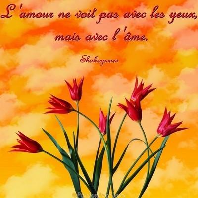 Les Plus Belles Declarations D Amour Passion Des Fleurs