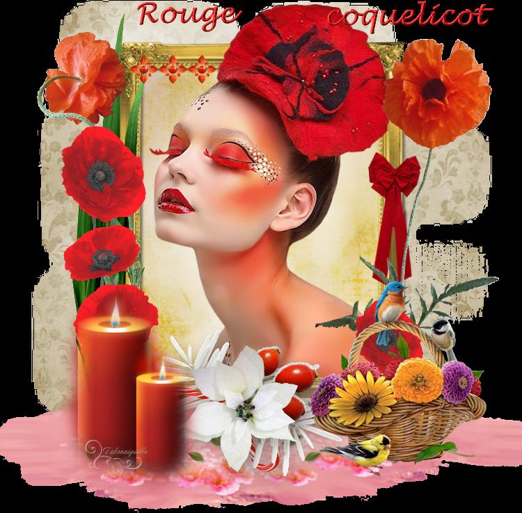 *** Rouge Coquelicot ***