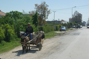 Rencontre Albanaise