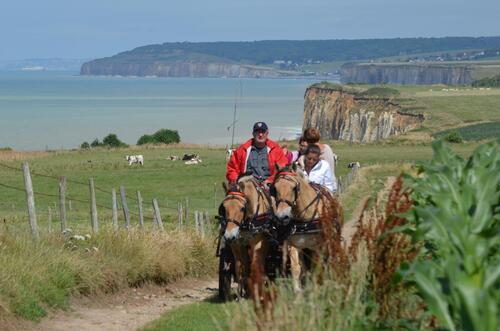 """13 au 17 juillet - Randonnée attelage """"Baie de Somme-> Baie de Seine !"""" - Page 2 Pk-Xk9tC0Hwfhg6YT2v55sd3LQM@500x331"""