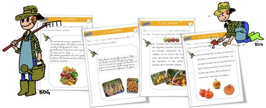 Rallye-copie : légumes !!!! CP-CE1
