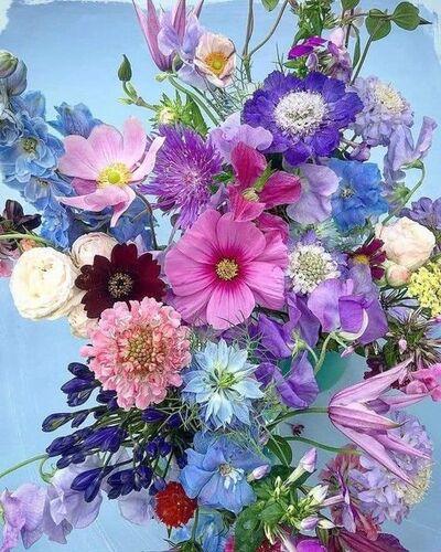 Profusion de fleurs(2)