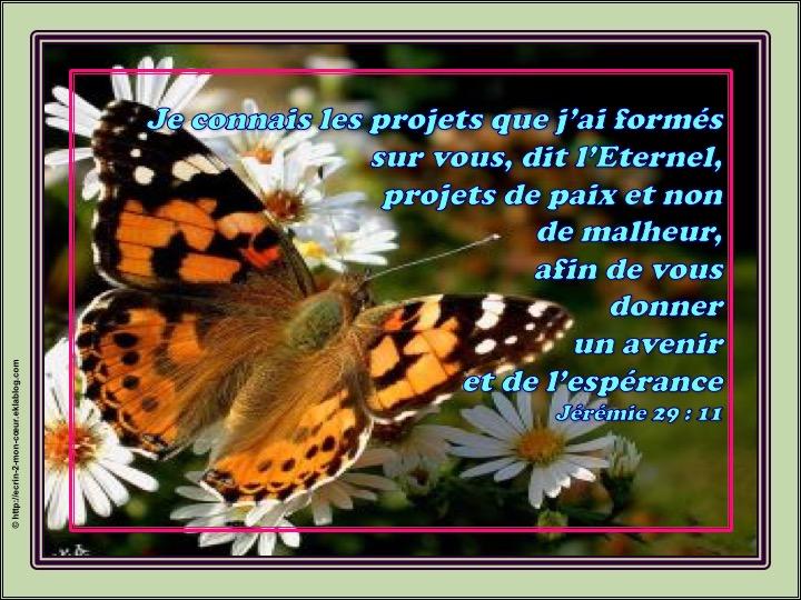 Projets de paix, avenir d'espérance - Jérémie 29 : 11