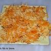 tuiles de fromage et carotte