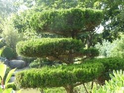 le jardin japonnais de Toulouse
