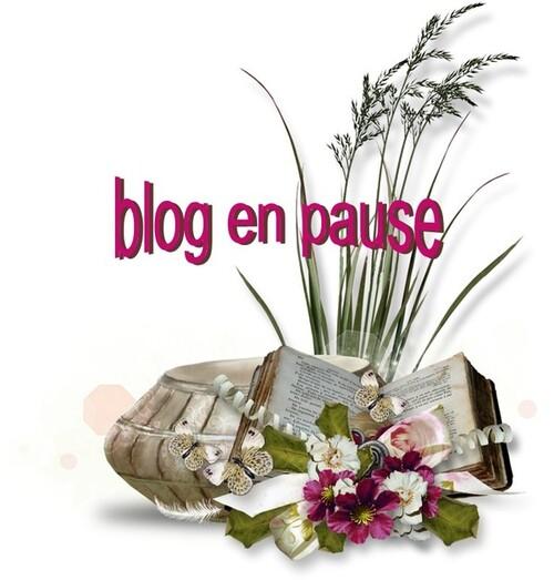Blog en pause indéterminée...