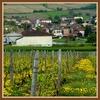 20130507-mont La Fa-Verze