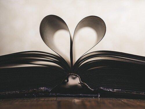 Quelle lectrice je suis ? lecture voyages sur un mot roman avis littéraire chronique livre