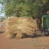 mali bamako campement kangaba sur la piste charette de paille