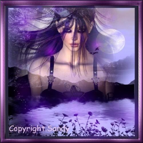 Teinte violette