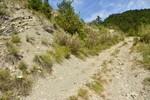 — Montée au col de Bauras côté Rochefourchat (Gauze) —- source : www.visorando.com ——