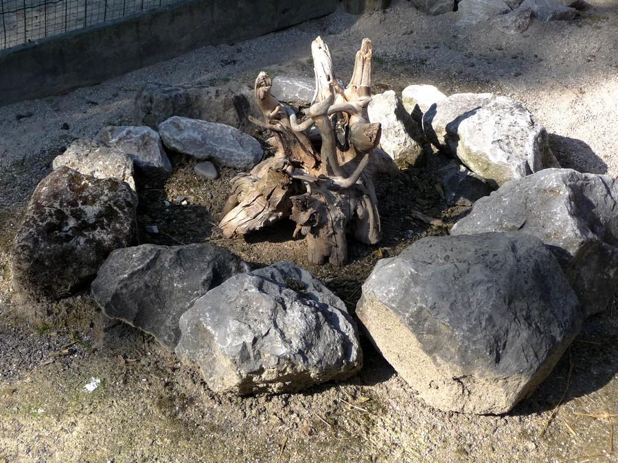 Le Zanimaux du Zoo d'Amiens