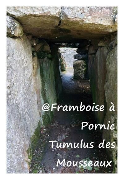 Pornic, Tumulus des Mousseaux