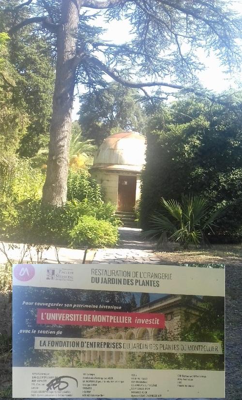 MONTPELLIER OUEST, jardin des plantes, arc de triomphe