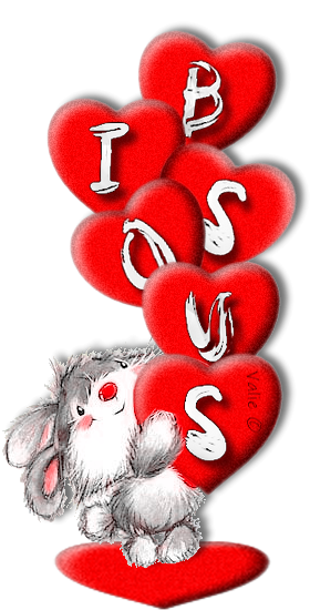 BISOUS 13