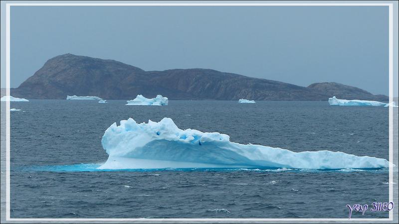 Nous avons levé l'ancre et nous dirigeons vers notre prochaine escale : Kullorsuaq - Upernavik - Groenland