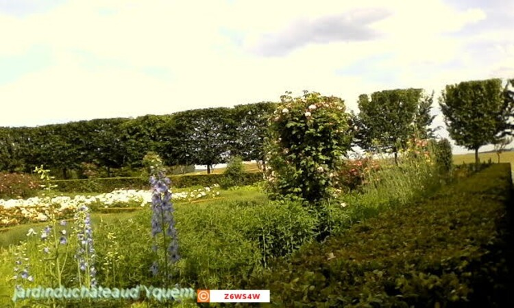 les jardins du Château d'Yquem a Sauternes en gironde  peuvent se voir tous les jours