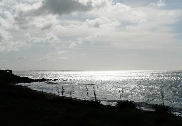 27-02-2011-028.jpg
