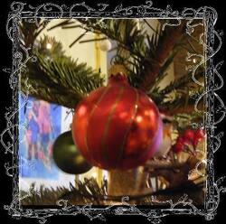 Jardiner avec la lune du 16 au 31 Décembre