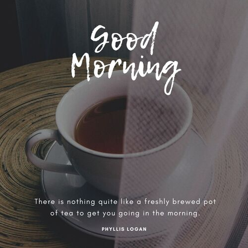 45+ Best Good Morning Messages with Images to Vanish Stress