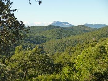 Dépassant de l'horizon forestier, le Coudon