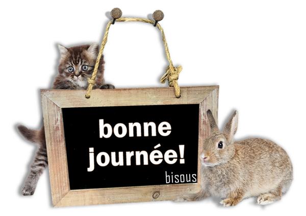 BONNE  JOURNEE  3
