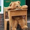 Ours à l'école