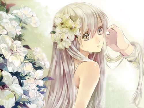 Image de anime, flowers, and anime girl
