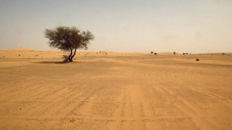 Emmanuel et Marine sont perdus  dans le désert