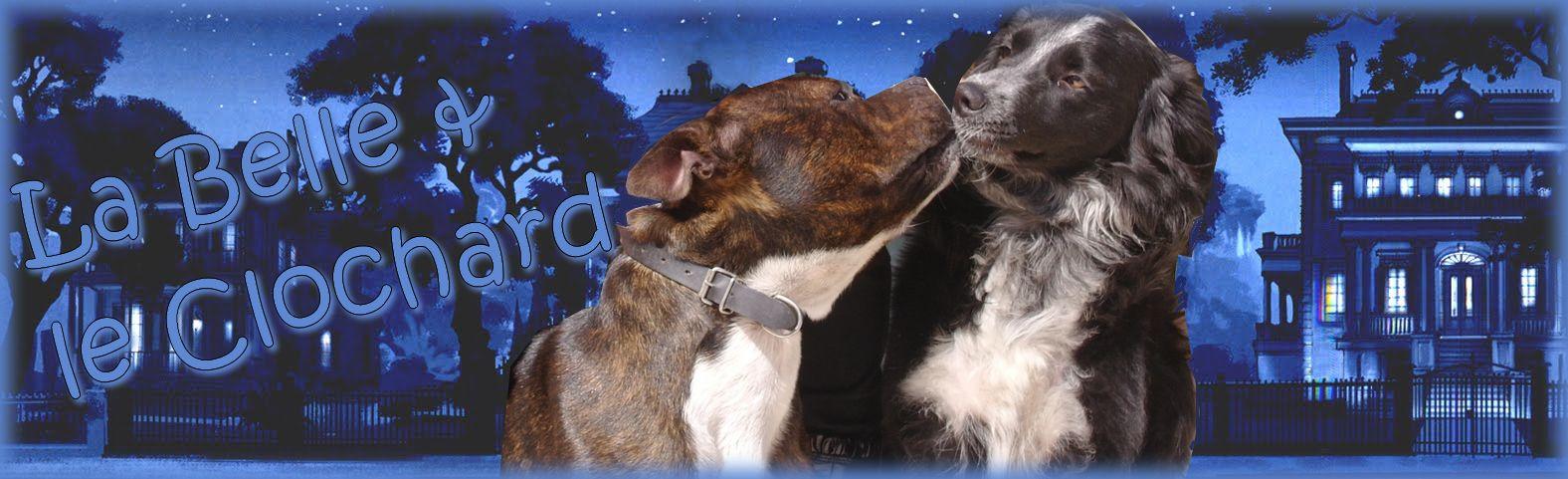 Helma & Spike amoureux