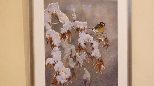 une petite mésange en hiver sous la neige