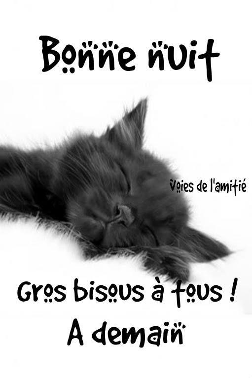 Bonne nuit Gros bisous à tous ! À demain #bonnenuit