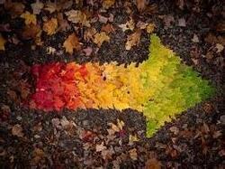 Marché d'automne à Gastines 53