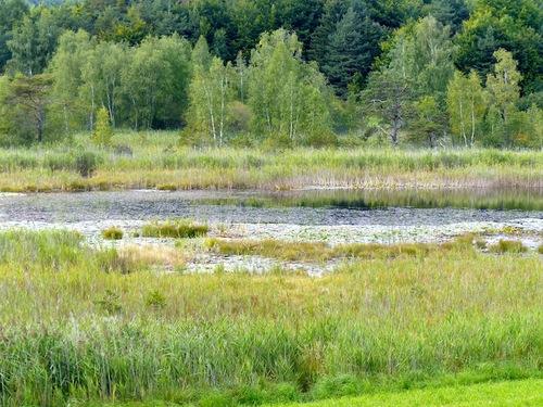 Lac de Saint Léger (St Jean-Montclar)