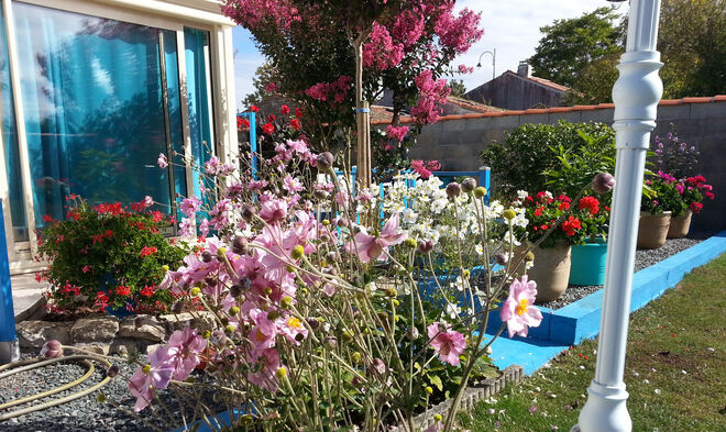 Promenade ce Dimanche en mon jardin