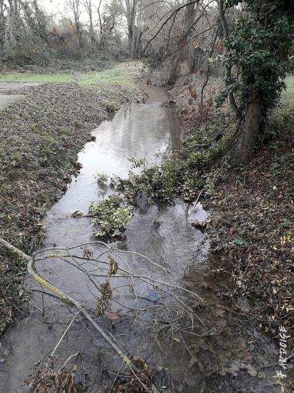 Les dégâts de la neige, suite entre Beauvallon et Etoile