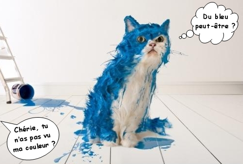 Voilà le chat de l'atelier de Daniel1951