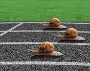 """Résultat de recherche d'images pour """"motivation sport"""""""