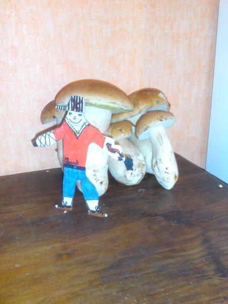 Recherche de champignons