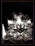 ChatPitre 6 : Léonor Fini et les chats