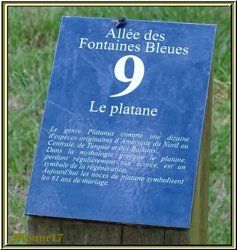 Le parc u Château de Beaulon 2/3