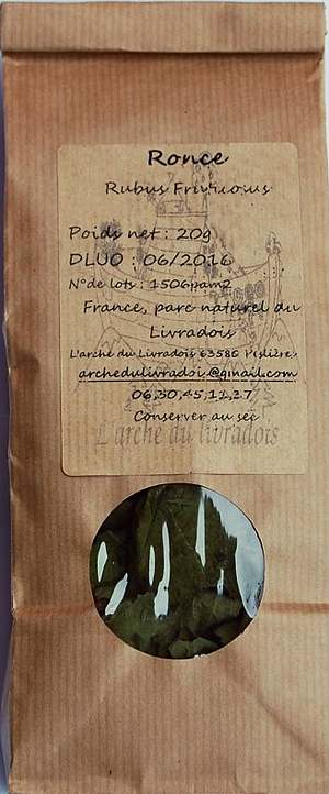 Vertus médicinales des plantes sauvages : Ronce
