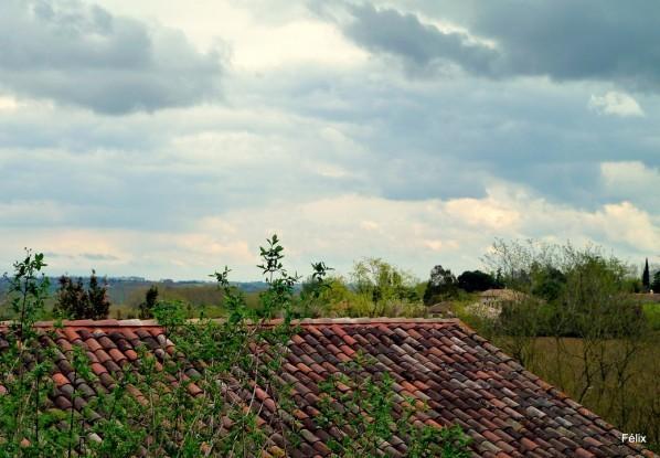 y01---Sur-le-toit.JPG