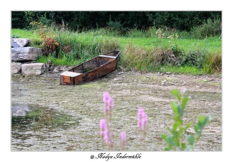 Ma balade au Lac de Bairon